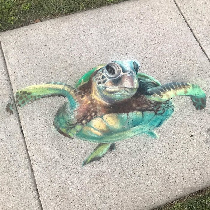 Tortuga marina dibujada con tiza