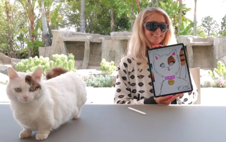 Paris Hilton pintando gatos
