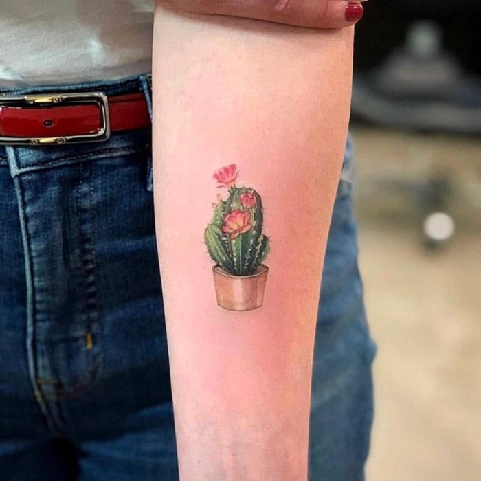 Tatuajes temporales; cactus pequeño con flores en color, brazo