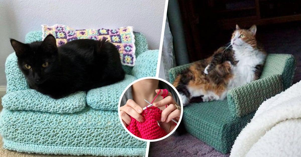 Personas hacen sofás para sus gatos con crochet y nos morimos de ternura