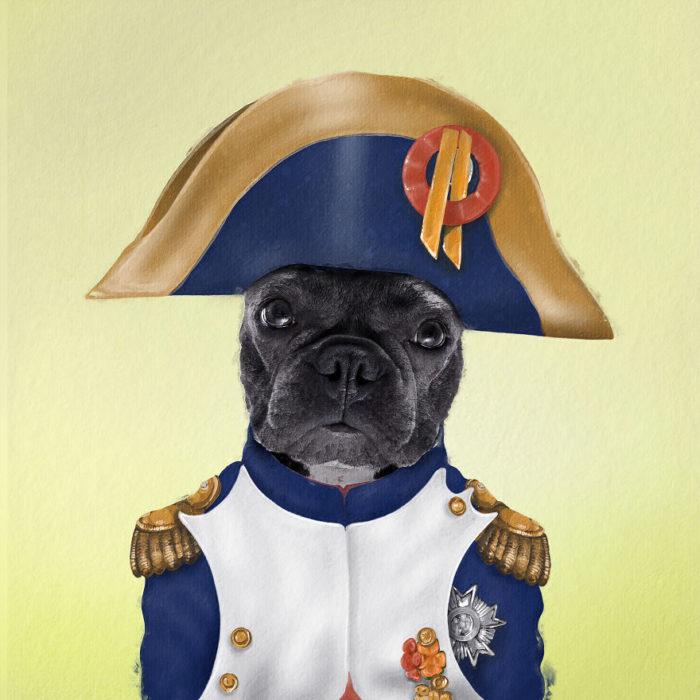Perro pug de color negro vestido como Napoleón