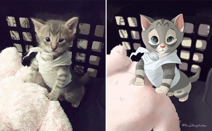 Dibujo 'Disneyficado' de un gatito vendado que se está recuperando