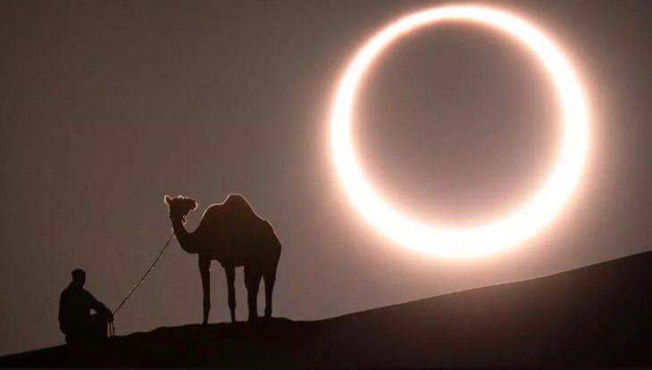 Persona y camello viendo el eclipse solar