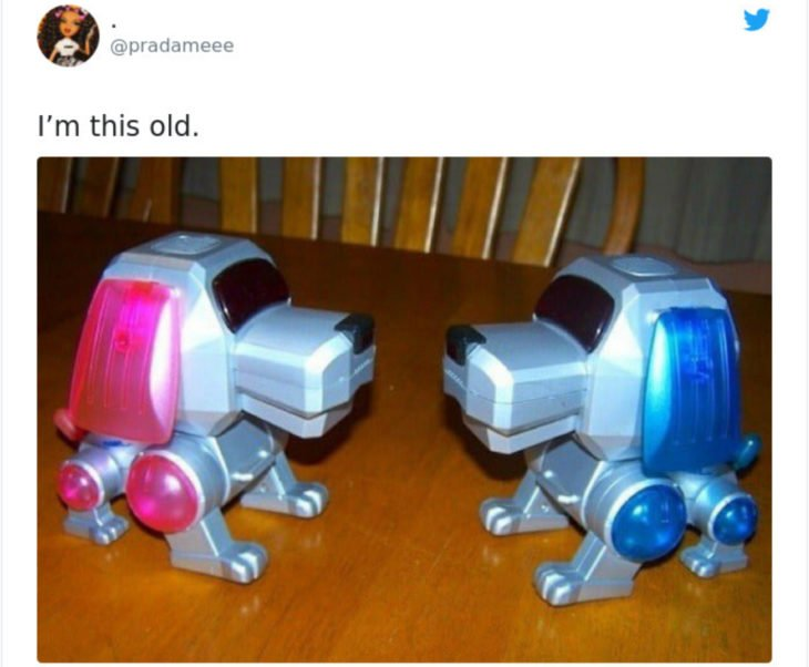 Artículos vintage que te harán sentir viejo; perro robot de juguete, Poo-Chi