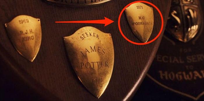 Placa de Mcgonagall como jugadora de quiditch en Harry Potter