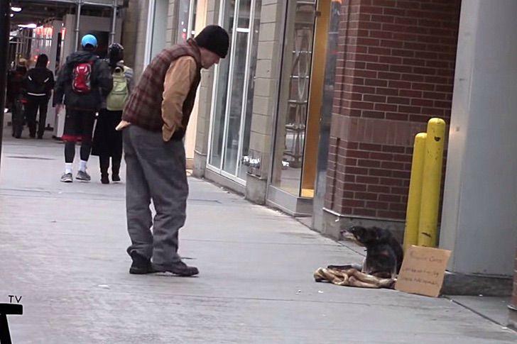 Hombre viendo a un perrito que fue abandonado y con un cartel en el cuello