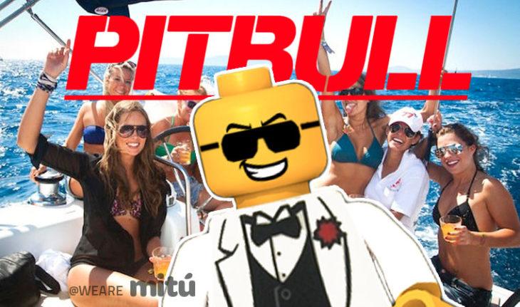 Lego PitBull