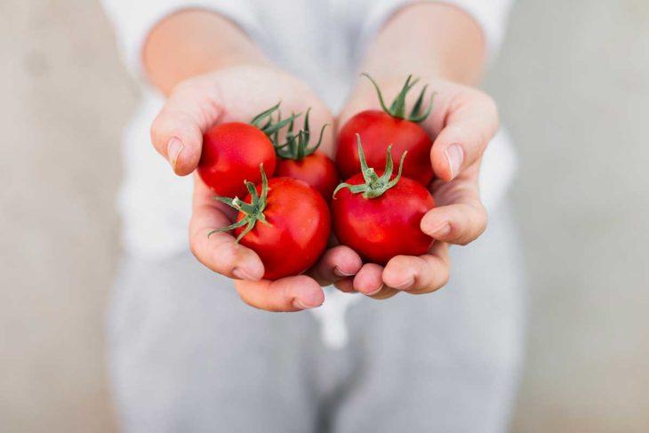 Manos de mujer sosteniendo tomates