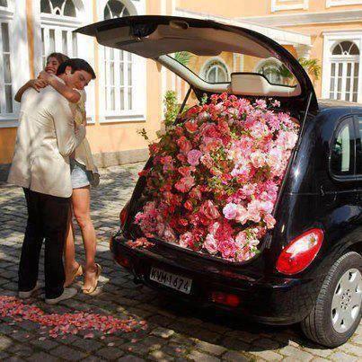 Chico obsequia a chica miles de flores en la cajuela de un coche azul