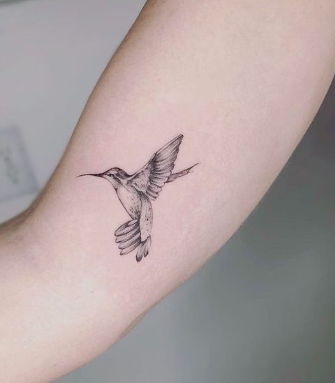 Tatuaje tinta negra colibrí en el brazo