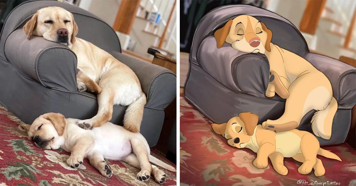 15 Mascotas al estilo Disney, ¡vas a querer la tuya ahora mismo!
