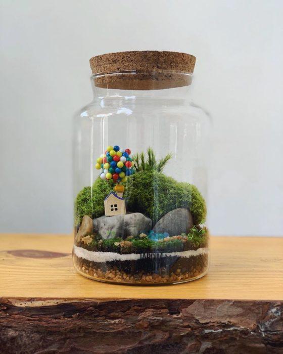 Mini ecosistema en contenedor de cristal