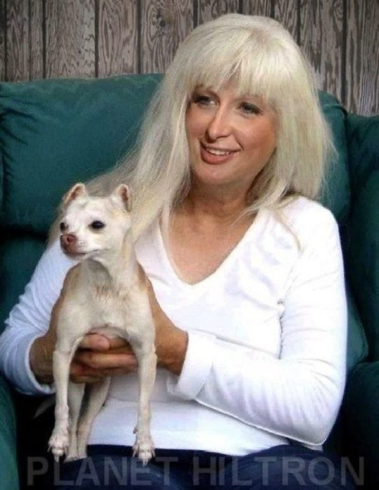 Paris Hilton caracterizada como una mujer adulta con una gran nariz y cabello platinado. Sentada sosteniendo a un perro chihuahua