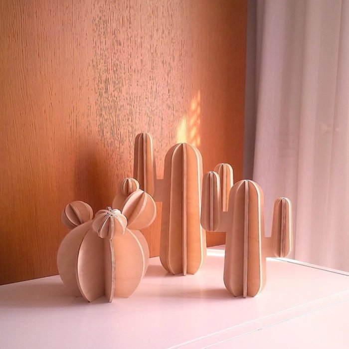 Artículos de decoración para el hogar; cactus de mesa