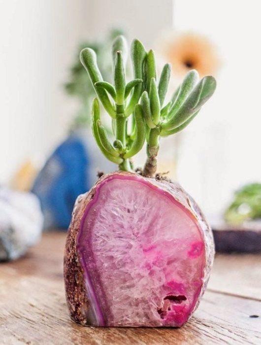 Maceta con cuarzo rosado