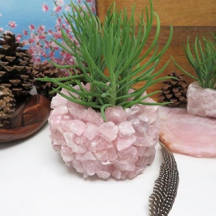 Maceta con cuarzo rosado en trozos