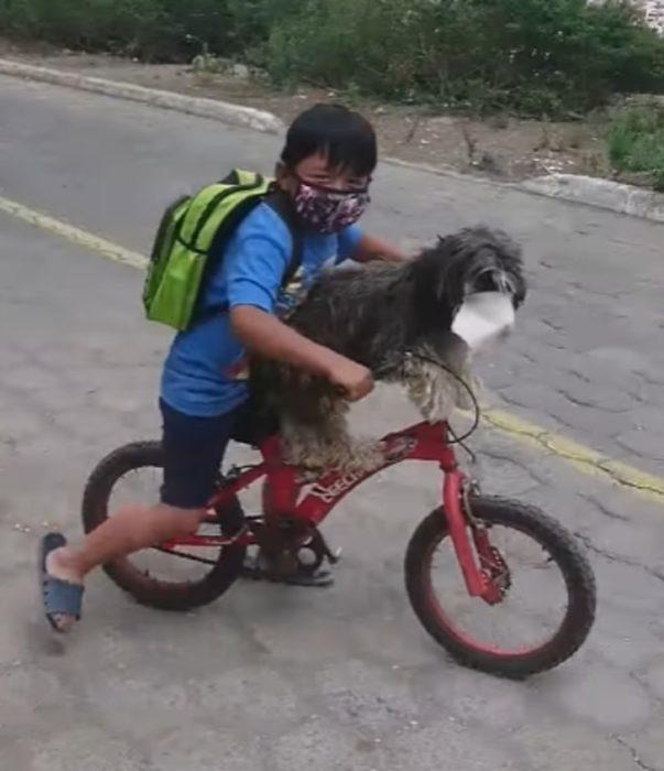 Niño paseando en bicicleta con su perro con cubrebocas