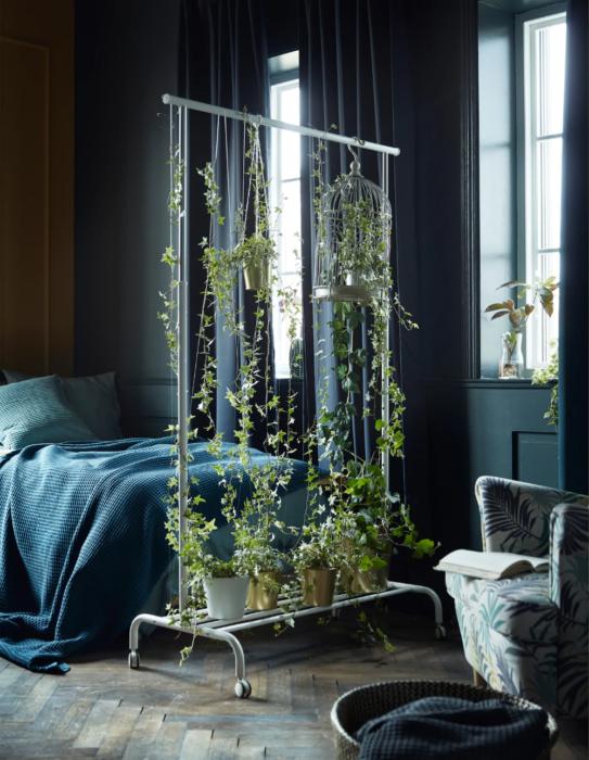 Planta enredadera decorando rack que divide parte de la habitaci´n