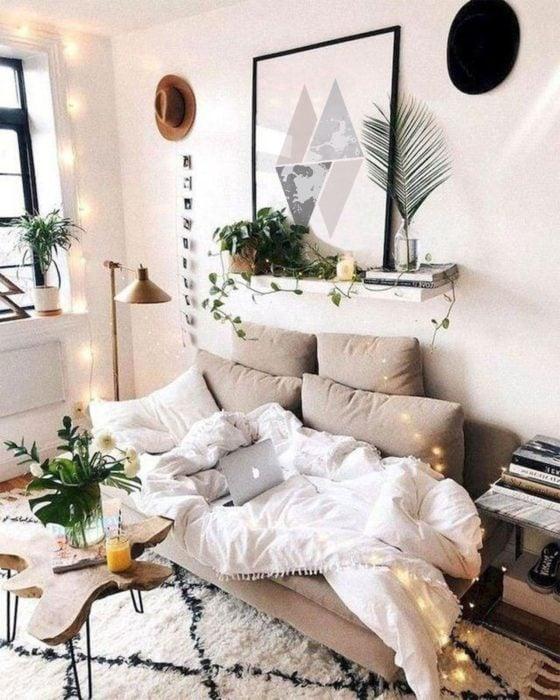 sala con repisa y plantas sobre ella