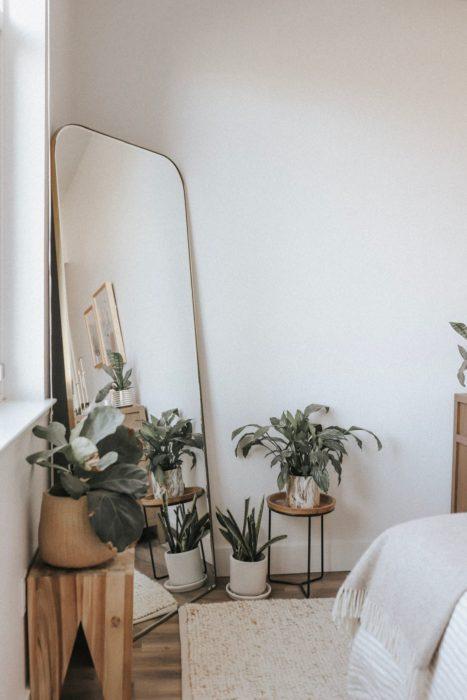 Espejo de cuerpo completo con macetas al rededor