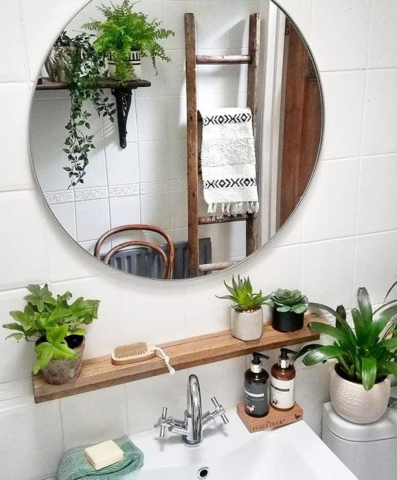 Espejo de baño y plantas en esa área