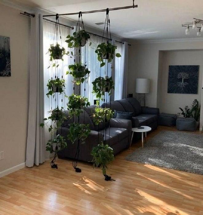 Cortina de plantas colgantes que divide habitación de casa