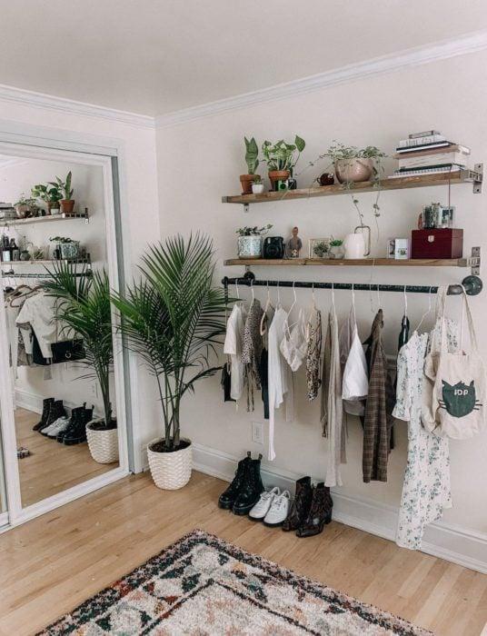 área de armario decorado con plantas