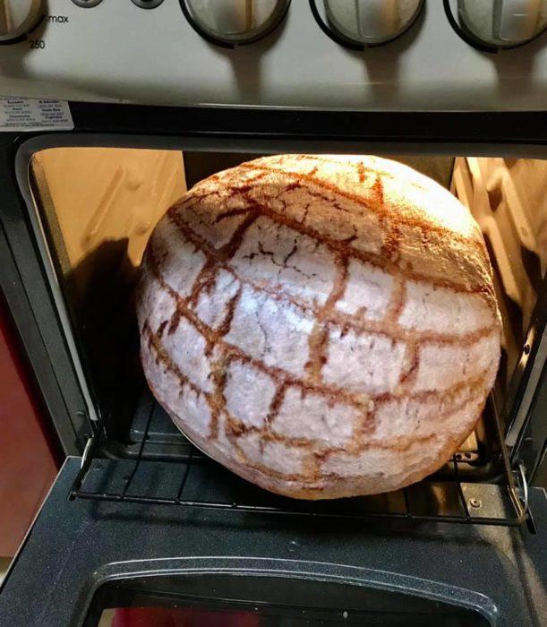 Almohada en forma de concha saliendo del horno