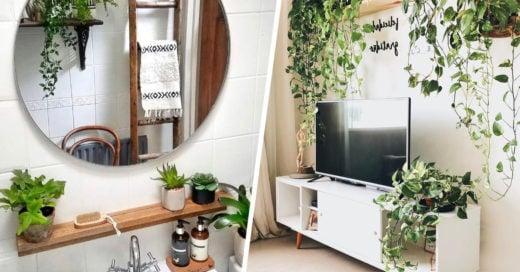 15 Formas de decorar para que tu 'señora de las plantas' sea plena y feliz