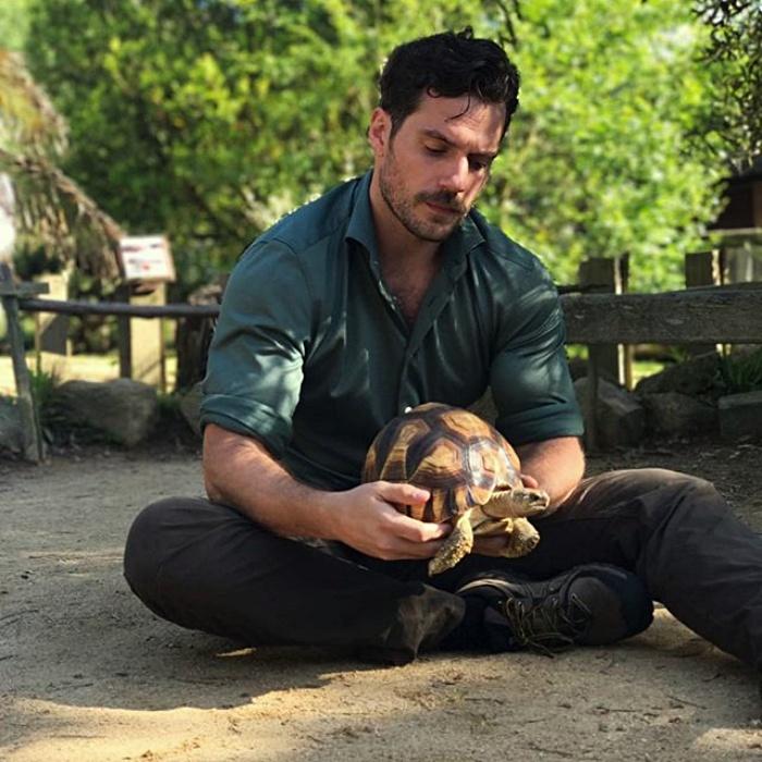 henry cavill con una tortuga