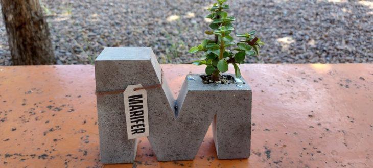 Maceta en forma de M, con un árbol de la abundancia plantado