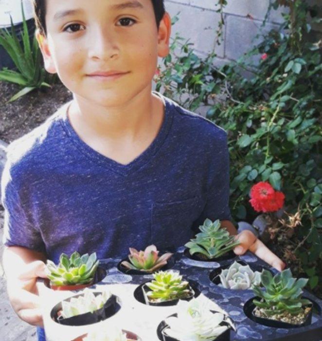 Aaron Moreno  con suculentas