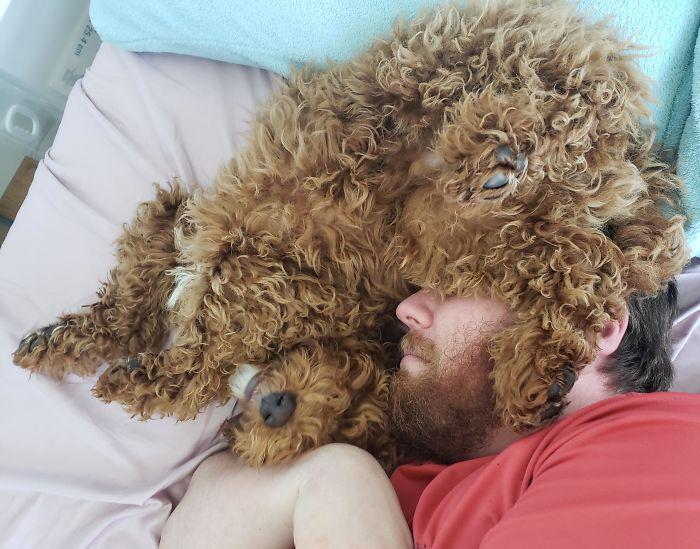"""Hombres que """"no querían mascotas en casa"""""""