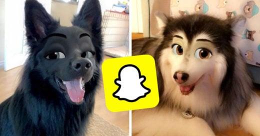 Nuevo filtro de Snapchat convierte a tu mascota en un personaje de Disney