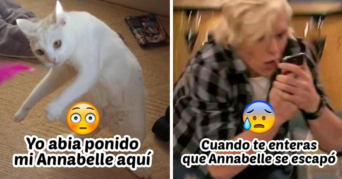 portada memes Annabelle