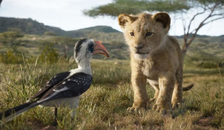Escena de El rey león en live action, donde aparece Simba y Zazú