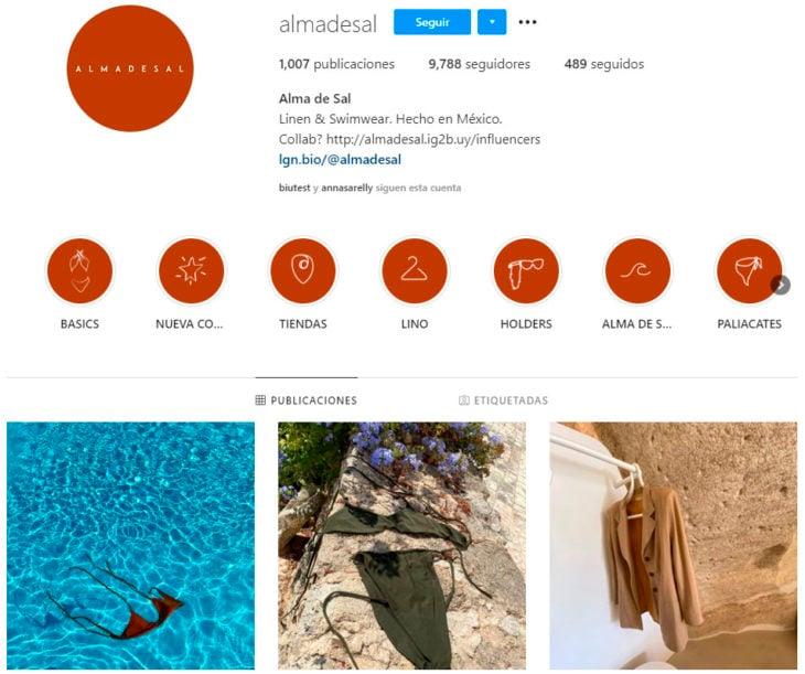 Perfil de instagram de la marca de ropa mexicana Alma de sal