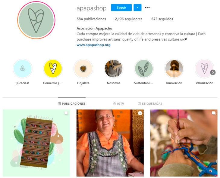 Perfil de instagram de la marca de ropa mexicana Apapashop