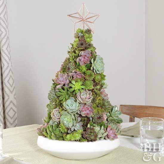 Árboles de navidad hechos con suculentas