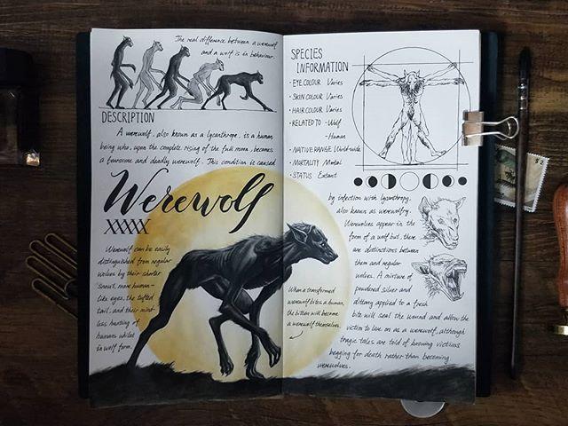 Ilustración del artista hazelnut_lz, inspirada en loas criaturas mágicas de Harry Potter, Hombre lobo