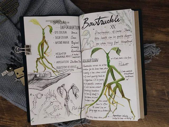 Ilustración del artista hazelnut_lz, inspirada en loas criaturas mágicas de Harry Potter, Bowtruckle