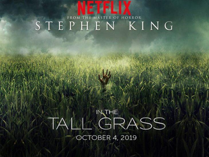 Poster de la película En la hierba alta