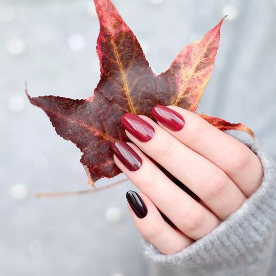 Manicure in red and wine tones