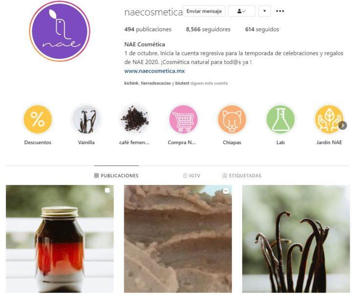 Screen shot of NAE's Instagram profile