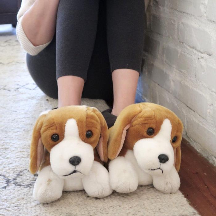 Cute, kawaii, cute beagle dog slippers