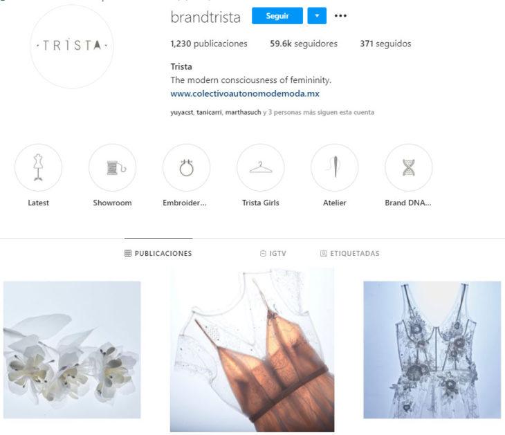 Perfil de instagram de la marca de ropa mexicana Trista