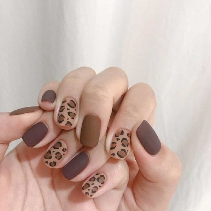 Manicure in animal print design in earth colors with decorated index and ring fingers