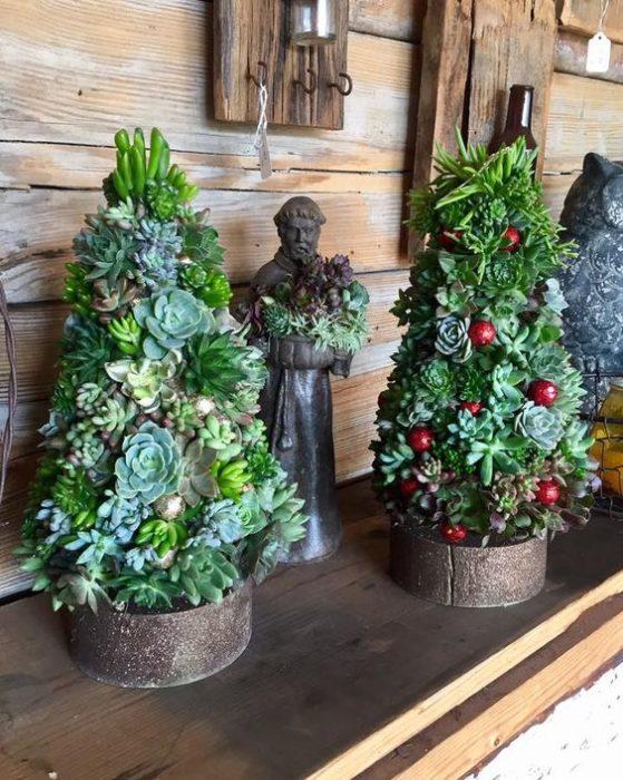 árboles navideños con suculentas