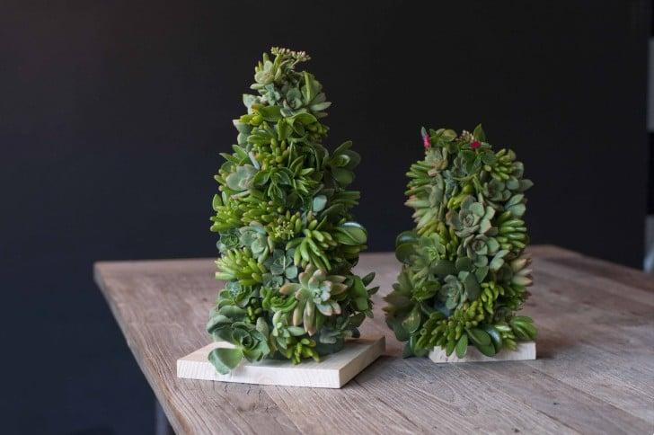Instrucciones para hacer un árbol de navidad de suculentas