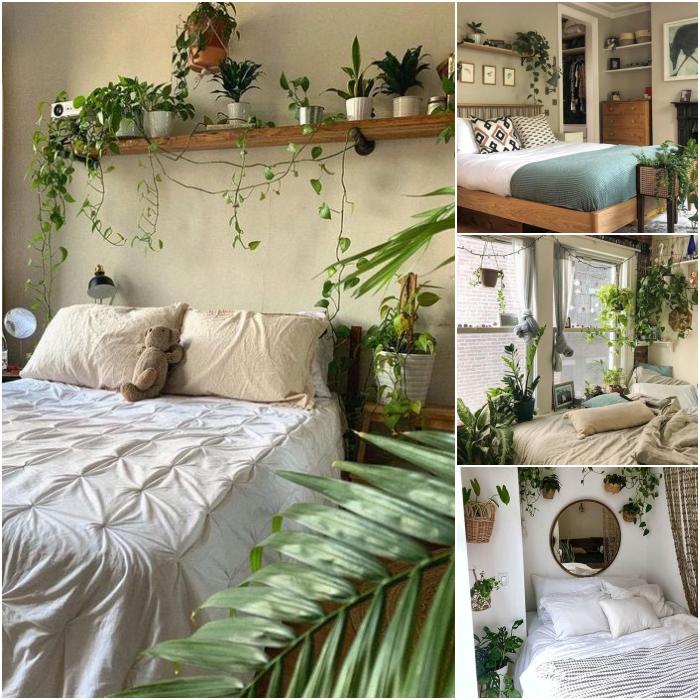 habitaciones en colores blancos y neutrales con macetas y plantas